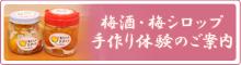 梅酒・梅シロップ作り体験
