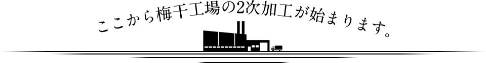 ここから梅干工場の2次加工がはじまります。
