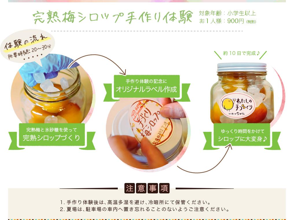 完熟梅シロップ手作り体験